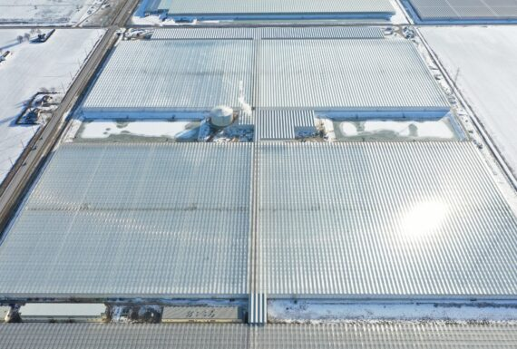 Pomas Farms Largest Pepper Greenhouse