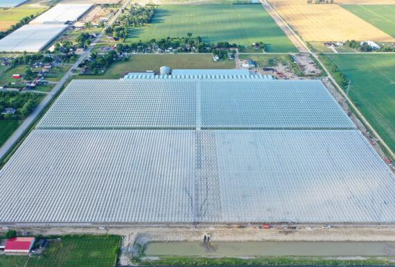 Double Diamond Farms