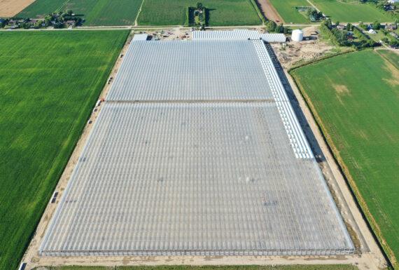 Lebo Farms