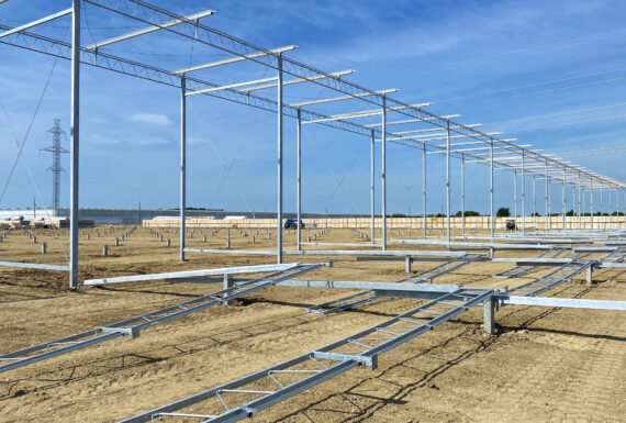 Pomas Farms - largest pepper greenhouse