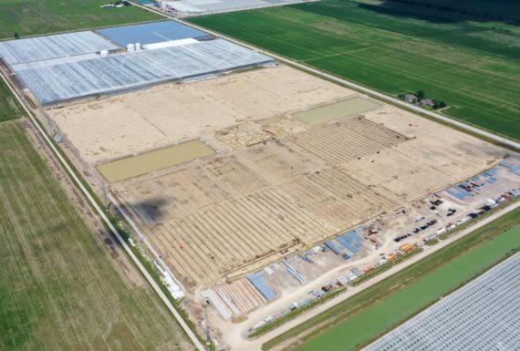 Pomas Farms Inc. 04