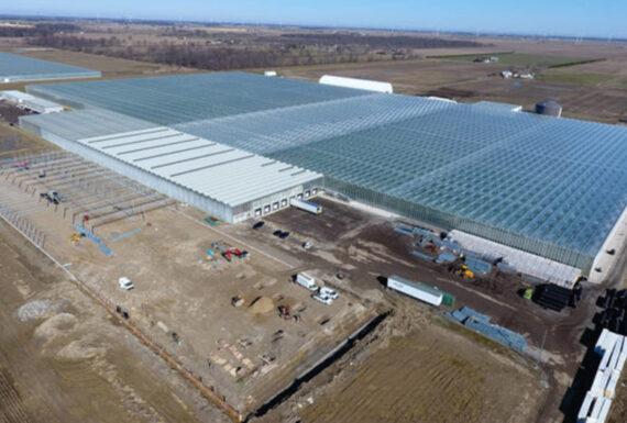 Nature Fresh Farms Phase 6